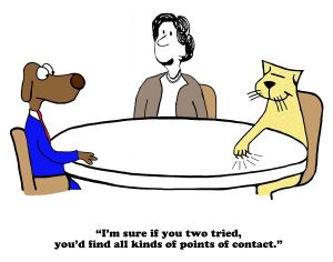 Connecting Requires Finding Common Ground cartoon